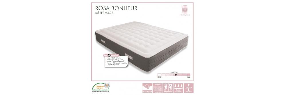ROSA BONHEUR - RE360S28